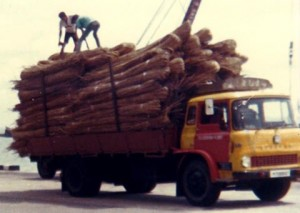 1983 3rd Party Logistics Warehousing Supply Chain distribution transportation container haulage